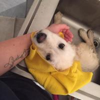 Louna à la douche