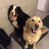 Louna et Jeko