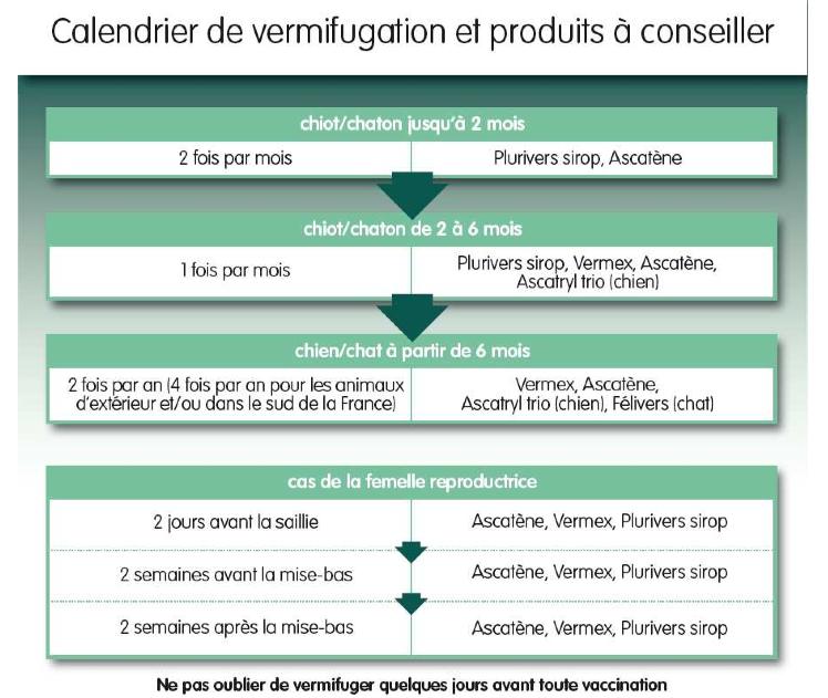 Vaccin Chiot Calendrier.Vermifuges